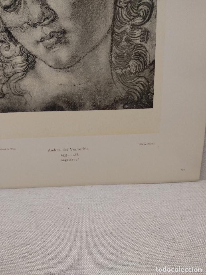 Arte: Estudio de cabeza de angel Andrea del Verrochio, Meister Albertina, plancha nº 134 - Foto 3 - 237155040