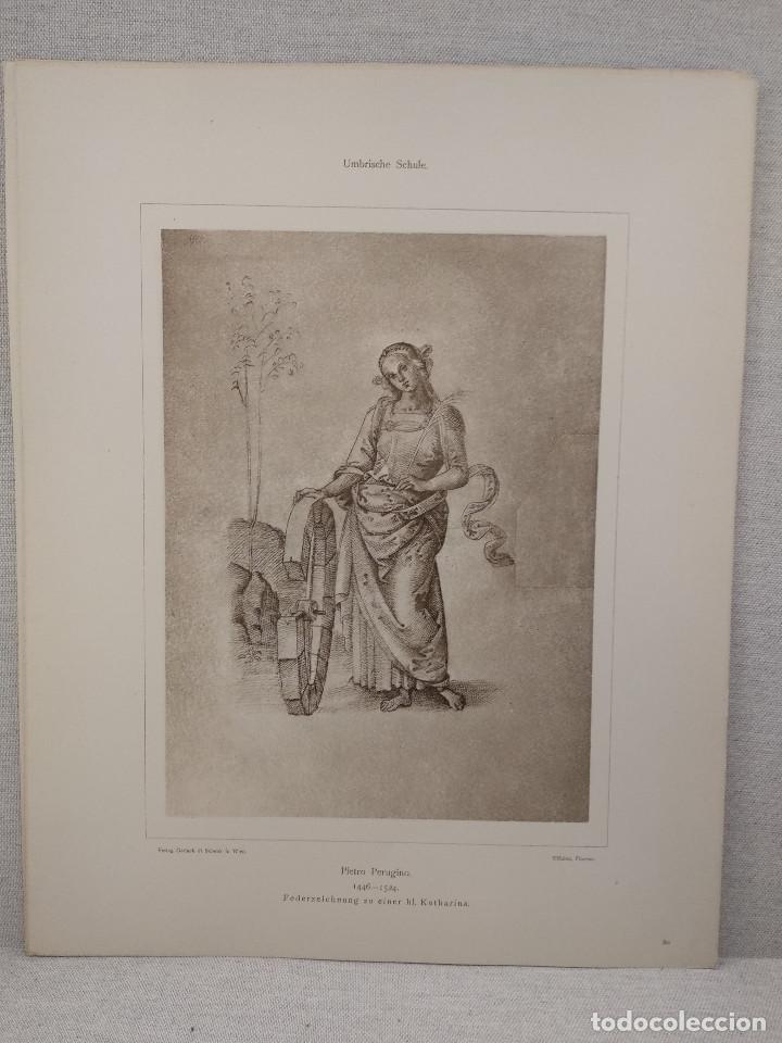 DIBUJO DE SANTA CATHERINA DE PIETRO PERUGINO, MEISTER ALBERTINA, PLANCHA Nº 80 (Arte - Láminas Antiguas)