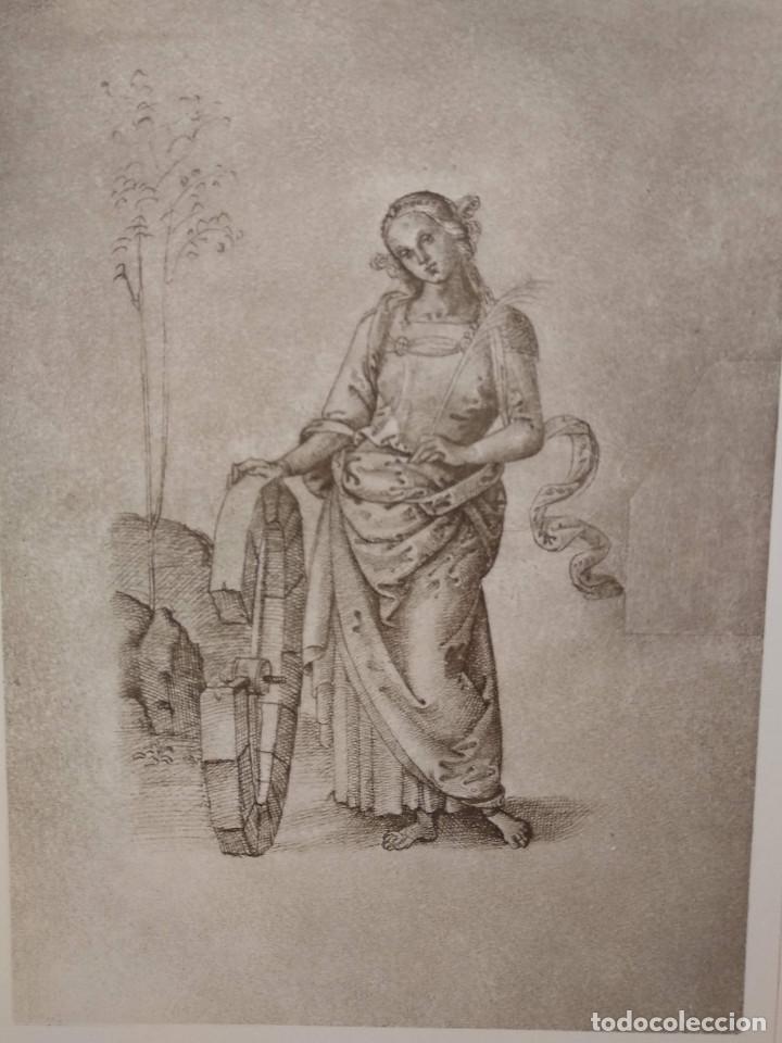 Arte: Dibujo de Santa Catherina de Pietro Perugino, Meister Albertina, plancha nº 80 - Foto 2 - 237156480