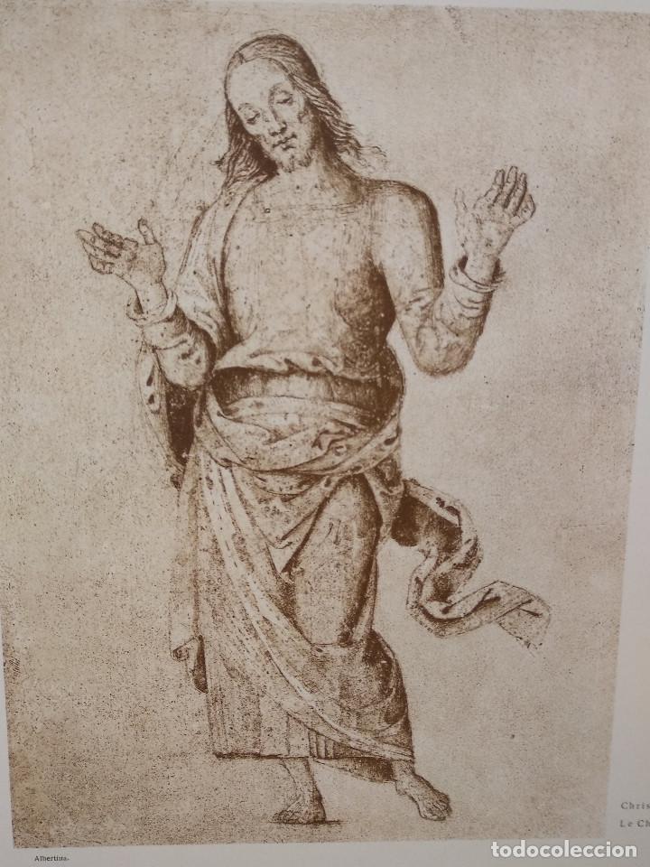 Arte: Cristo en gloria de Pietro Perugino, Meister Albertina, plancha nº 803 - Foto 2 - 237157400