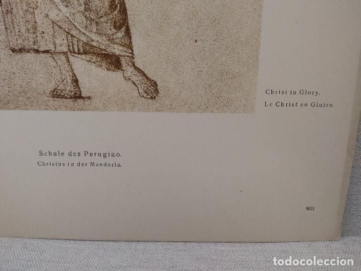 Arte: Cristo en gloria de Pietro Perugino, Meister Albertina, plancha nº 803 - Foto 3 - 237157400