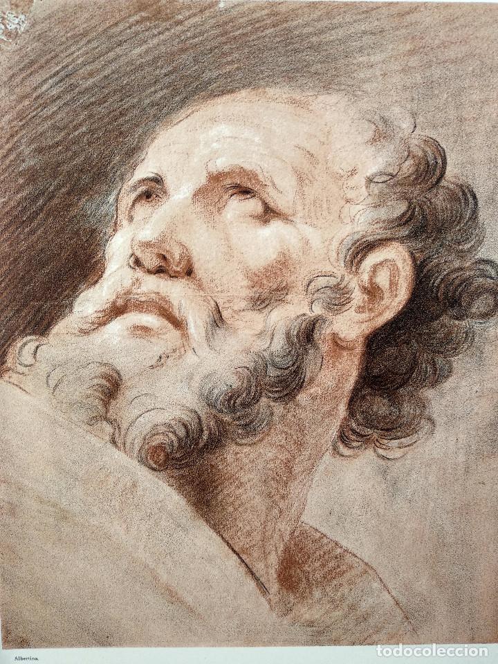 Arte: Estudio de cabeza de Francois Boucher, Meister Albertina, plancha nº 519 - Foto 2 - 237372755