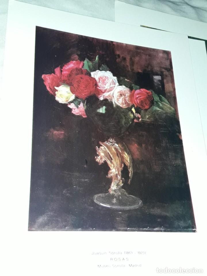 Arte: 3 Lamina de Joaquín Sorolla, Rosas, El Viejo del Pitillo, Jardin Casa Sorolla año 1979 Juan Chamorro - Foto 9 - 239430585