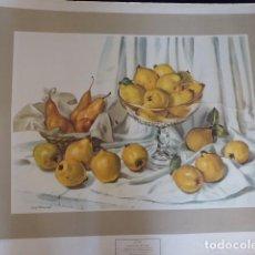 Arte: GRAN LAMINA BODEGON, DE CARL BROEMEL, IMPRESO EN ITALIA, 72X62,. Lote 240223525
