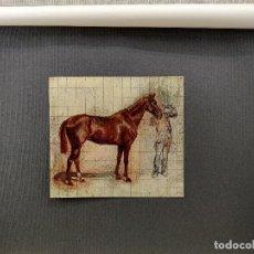 Arte: ESTUDIO DE CABALLO DE MEISSONIER, PLANCHA Nº 243 DE MEISTER DER FARBE 1907,. Lote 245565535