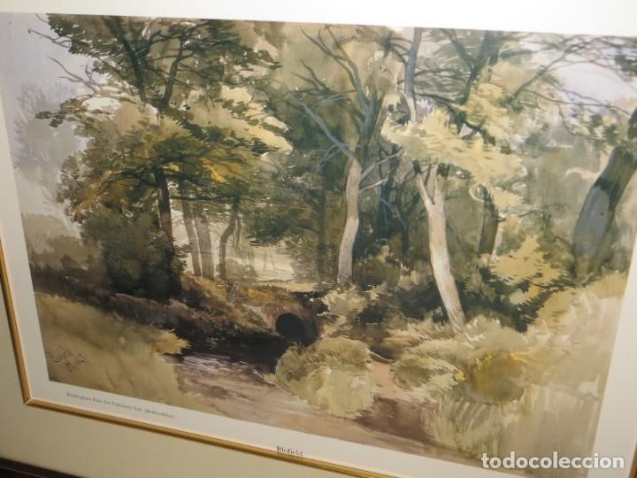 Arte: Par conjunto colección cuadros láminas acuarelas antiguas John Middleton (1827-1856) Norfolk England - Foto 8 - 254821075