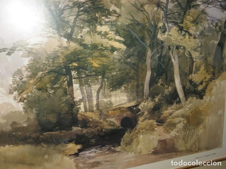 Arte: Par conjunto colección cuadros láminas acuarelas antiguas John Middleton (1827-1856) Norfolk England - Foto 9 - 254821075
