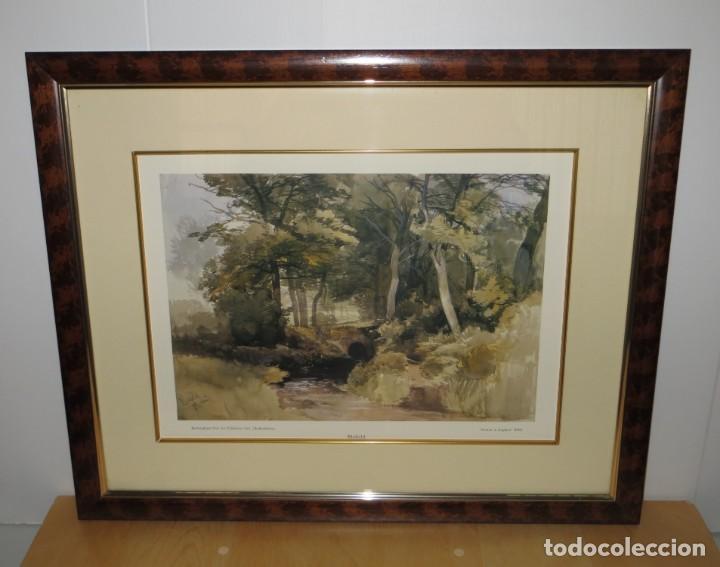 Arte: Par conjunto colección cuadros láminas acuarelas antiguas John Middleton (1827-1856) Norfolk England - Foto 13 - 254821075