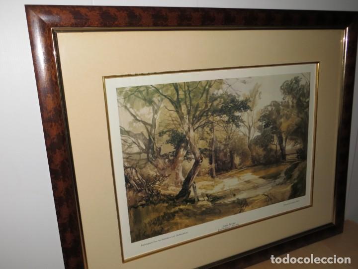 Arte: Par conjunto colección cuadros láminas acuarelas antiguas John Middleton (1827-1856) Norfolk England - Foto 20 - 254821075