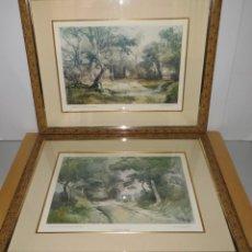 Arte: PAR CONJUNTO COLECCIÓN CUADROS LÁMINAS ACUARELAS ANTIGUAS JOHN MIDDLETON (1827-1856) NORFOLK ENGLAND. Lote 254821220