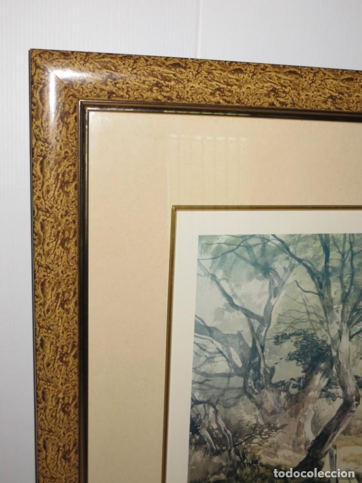 Arte: Par conjunto colección cuadros láminas acuarelas antiguas John Middleton (1827-1856) Norfolk England - Foto 13 - 254821220