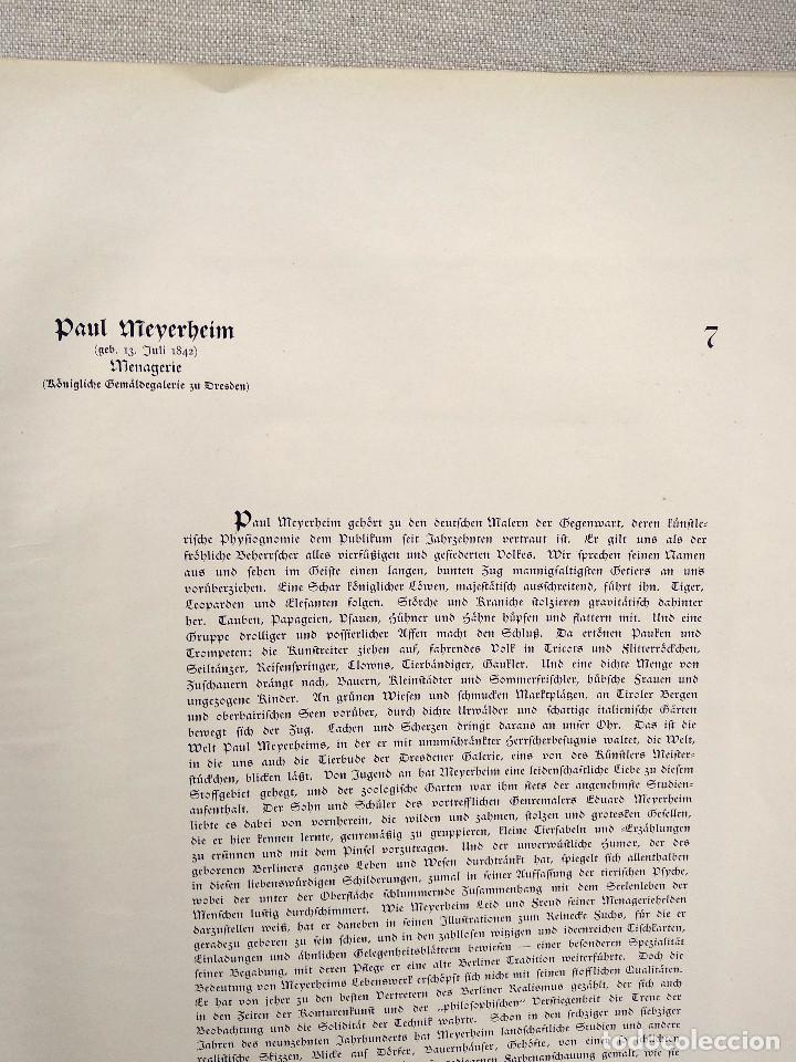 Arte: Fieras de Paul Friedrich Meyerheim, de Meister der Gegenwart 1904, nº 7 - Foto 3 - 261253875