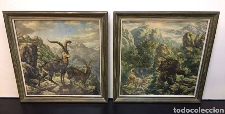Arte: Antiguos Dibujos en lámina de animales salvajes enmarcados en cristal, borde en madera lujo - Foto 2 - 261261865