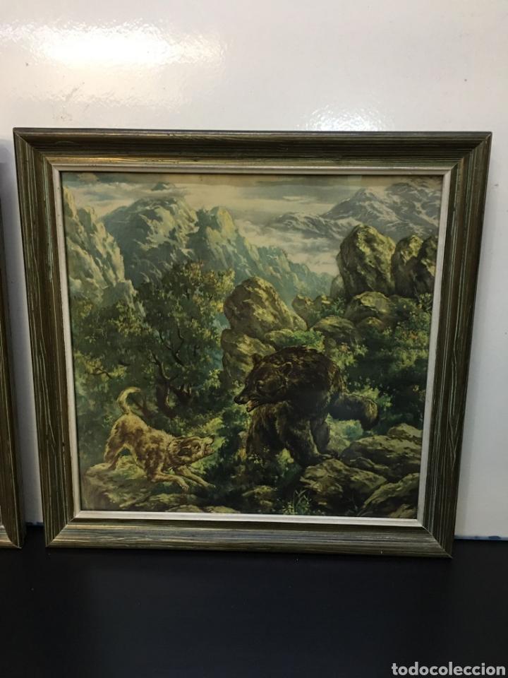 Arte: Antiguos Dibujos en lámina de animales salvajes enmarcados en cristal, borde en madera lujo - Foto 4 - 261261865