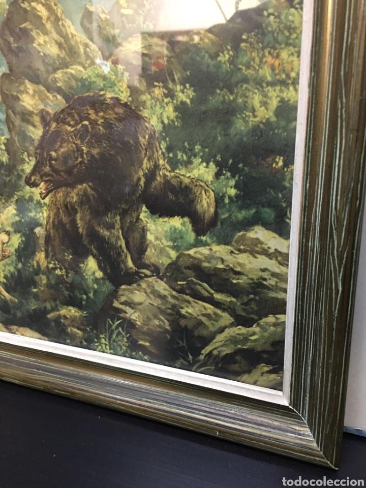 Arte: Antiguos Dibujos en lámina de animales salvajes enmarcados en cristal, borde en madera lujo - Foto 5 - 261261865