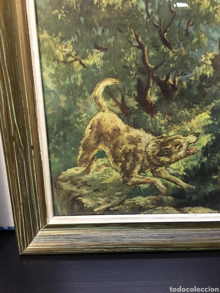 Arte: Antiguos Dibujos en lámina de animales salvajes enmarcados en cristal, borde en madera lujo - Foto 6 - 261261865