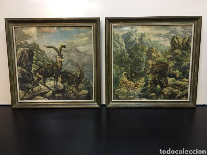 ANTIGUOS DIBUJOS EN LÁMINA DE ANIMALES SALVAJES ENMARCADOS EN CRISTAL, BORDE EN MADERA LUJO (Arte - Láminas Antiguas)