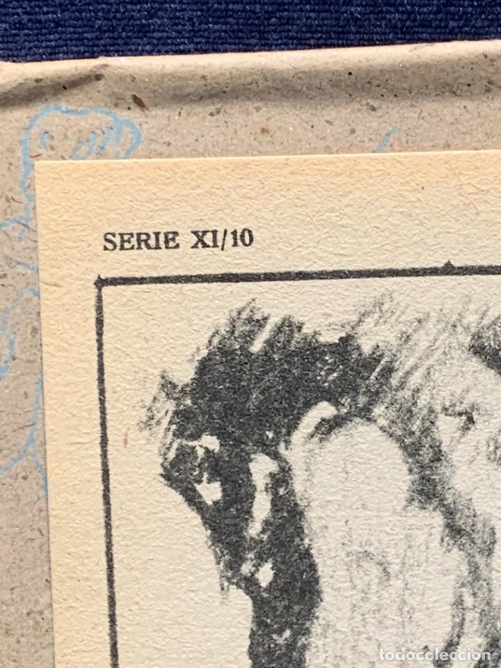Arte: 7 SERIES LAMINAS DIBUJO ARTISTICO EMILIO FREIXAS LECCIONES DIBUJO ARTISTICO 27X18CMS - Foto 76 - 265161059