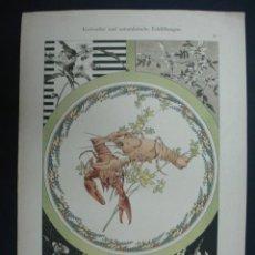 Arte: LITOGRAFÍA. DECORACIÓN. MARISCOS. CANGREJOS. BOGAVANTE. 25 X 35 CM. . Lote 23434296
