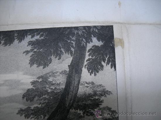 Arte: ANTIGUO GRABADO DEL REAL ESTABLECIMIENTO LITOGRÁFICO DE MADRID.MOISÉS SACADO DEL NILO.32X42 - Foto 4 - 26549523