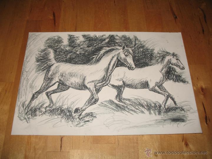 Obra De Arte Litografía Caballos Corriendo Libr Buy Lithographs At