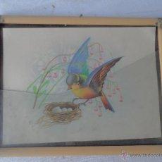 Arte: CUADRO LITOGRAFIA FIRMADA BONITO PAJARO. Lote 48708308