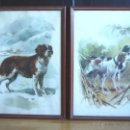 Arte: PAREJA DE ACUARELAS LITOGRAFIAS - VICENTE B. BALLESTAR - SERIE ANIMALES DOMESTICOS-PERRO ACUARELA. Lote 129124563