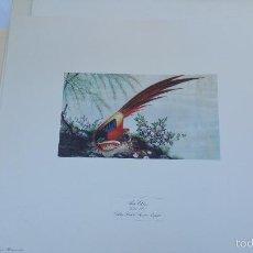 Arte: ESPECTACULAR LITOGRAFÍA DE LOS AÑOS 70 DEL PALACIO DE ARANJUEZ.. Lote 57791601