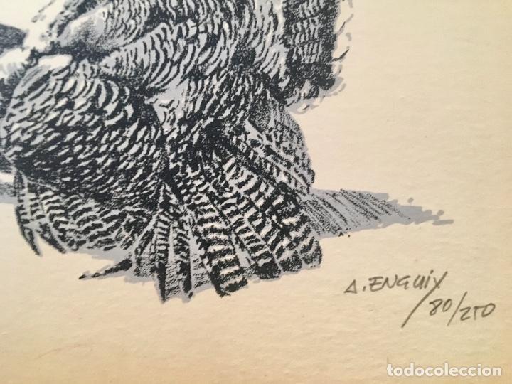 Arte: Dibujo litografico pavos reales original pintor Alfredo Enguix lamina 80/250 20x13,5 cm - Foto 3 - 88857864