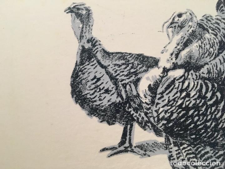 Arte: Dibujo litografico pavos reales original pintor Alfredo Enguix lamina 80/250 20x13,5 cm - Foto 4 - 88857864