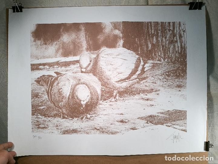 LITOGRAFÌA , OBRA EXCLUSIVA Y LIMITADA FIRMADA--DESCONOZCO AUTOR !!! AÑOS 80 (Arte - Litografías)