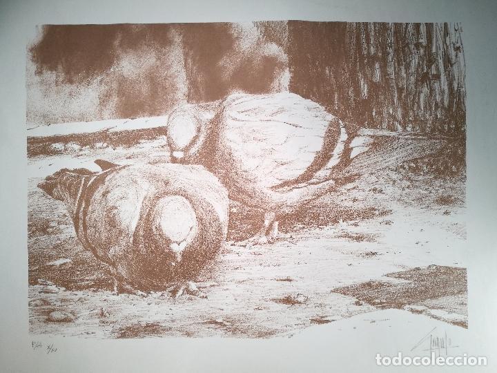 Arte: Litografìa , Obra exclusiva y limitada FIRMADA--DESCONOZCO AUTOR !!! AÑOS 80 - Foto 4 - 102227815