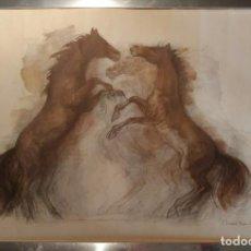 Arte: MADS STAGE. LITOGRAFÍA DE CABALLOS SALVAJES. FIRMADO EN PLANCHA. Lote 110263851