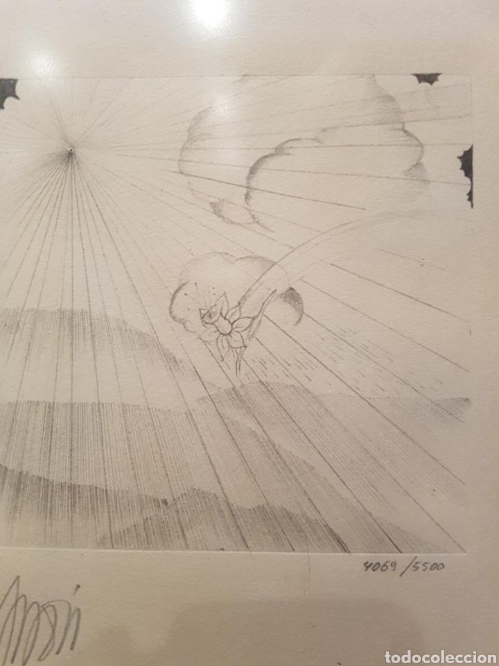 Arte: interesante litografia, enmarcada. Firmada y numerada. Firma ilegible. 28x38cm - Foto 3 - 111919882