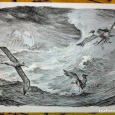 Arte: ALBERTO FREMURA LITOGRAFÍA NUMERADA Y FIRMADA 50X70. Lote 117304671