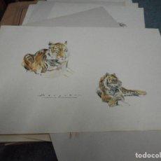 Arte: LITOGRAFIA NUMERADA Y FIRMADA A MANO CON SELLO ARCHIVO DE ARTE MIDE 49 POR 32 CM. Lote 120114563