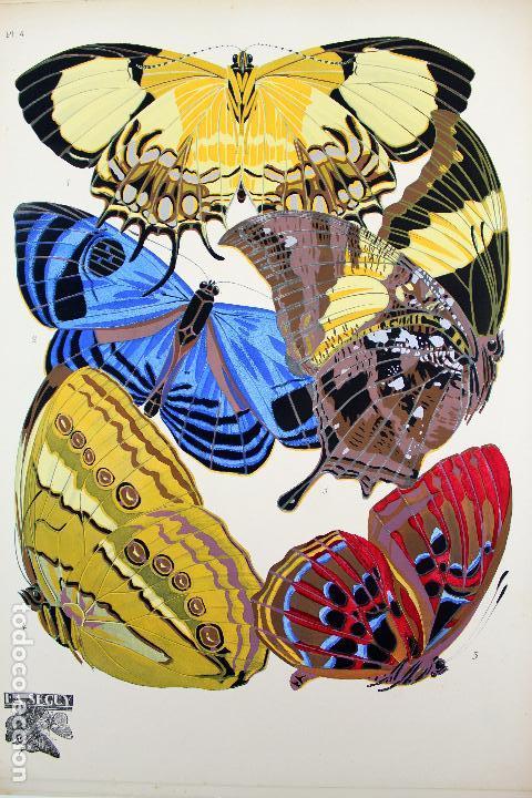 Arte: L-4976.E.A. SEGUY. PAPILLONS. PORTFOLIO DE 20 FOTOTIPIAS COLOREADAS. DISEÑO ART NOVEAU. AÑO 1925. - Foto 7 - 130123739