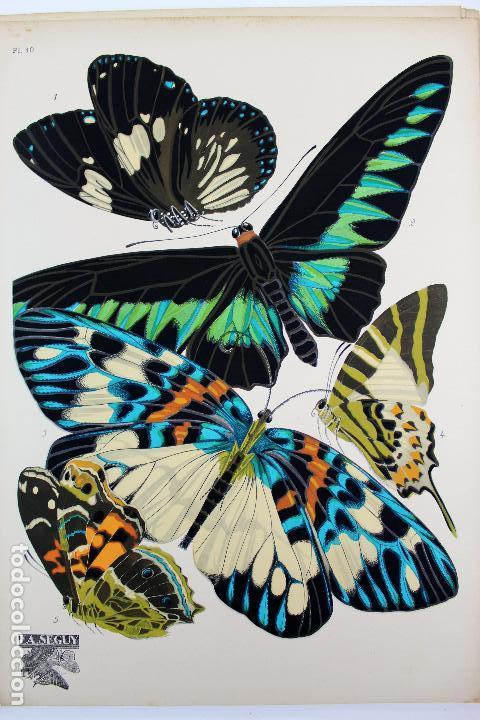 Arte: L-4976.E.A. SEGUY. PAPILLONS. PORTFOLIO DE 20 FOTOTIPIAS COLOREADAS. DISEÑO ART NOVEAU. AÑO 1925. - Foto 13 - 130123739