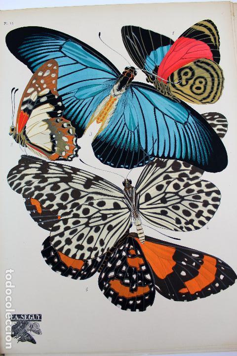 Arte: L-4976.E.A. SEGUY. PAPILLONS. PORTFOLIO DE 20 FOTOTIPIAS COLOREADAS. DISEÑO ART NOVEAU. AÑO 1925. - Foto 14 - 130123739