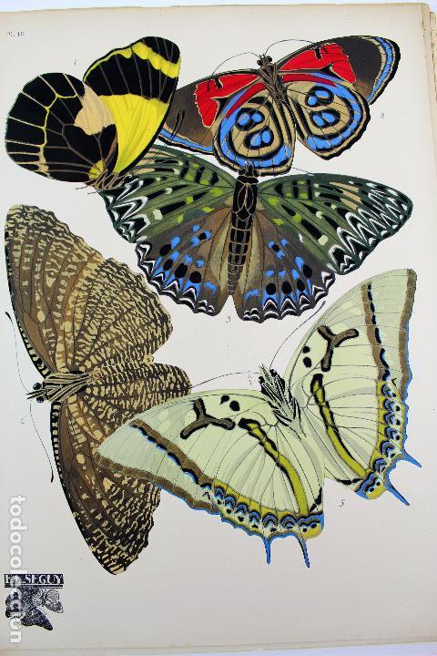 Arte: L-4976.E.A. SEGUY. PAPILLONS. PORTFOLIO DE 20 FOTOTIPIAS COLOREADAS. DISEÑO ART NOVEAU. AÑO 1925. - Foto 15 - 130123739