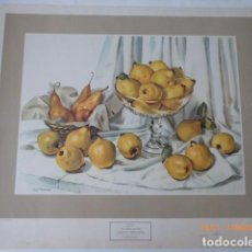 Arte: POSTER CARTEL GRANDE BODEGON, 70X60, DE CARL BROEMEL, . Lote 157890754