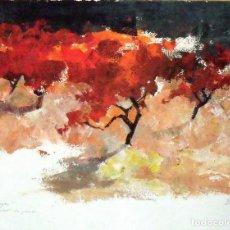 Arte: MARTA DURAN. LITOGRAFIA VINYES. VIÑAS. PRUEBA DE ARTISTA. FIRMADA A MANO. 37X48 CM.. Lote 161544262