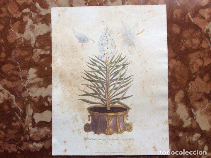 LITOGRAFÍA DEL XIX 35CMX28. (Arte - Litografías)
