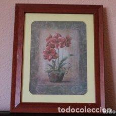 Arte: LITOGRAFIA, PINTORA VIVIAN FLOSCH TITULO WANDA´S AMARYLLIS L . Lote 174570478
