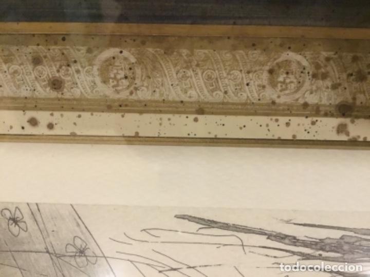 Arte: Picasso suite vollard, Lamina enmarcada. - Foto 3 - 176283334