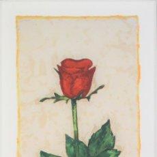 Arte: JOAN GUERRERO ROSA ROSA LITOGRAFÍA ORIGINAL COLOR FIRMADA Y NUMERADA A LÁPIZ E.A. PRUEBA ARTISTA. Lote 178753557