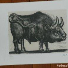 Art: PICASSO PABLO LITOGRAFIA FONDAZIONE FIRMA TAMPONE CERTIFICATO EX. 200. Lote 181513935