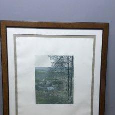 Arte: LITOGRAFÍA FIRMADA. Lote 185985405