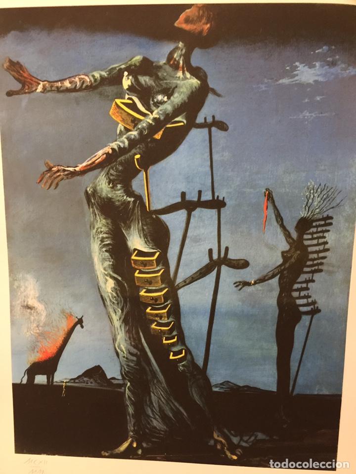 Arte: Salvador Dalí - Foto 8 - 191210471