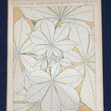 Arte: * HOJAS NATURALEZA * LEAVES FROM NATURE Nº 1 - GRAMMAR OF ORNAMENT / JONES OWEN - 1868. Lote 192247435